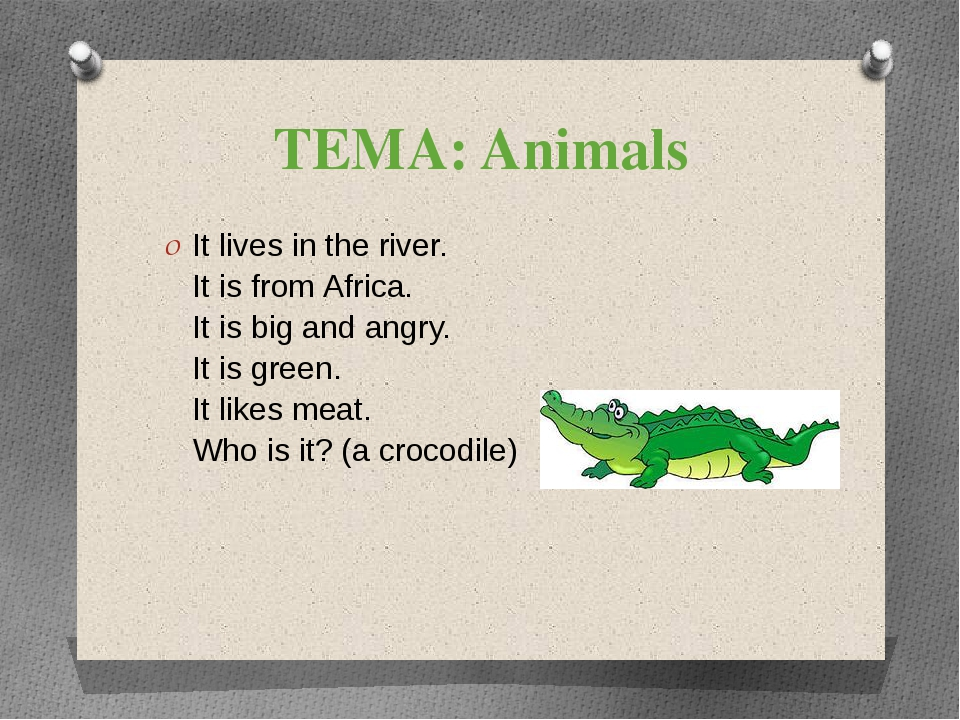 ТЕМА: Animals It lives in the river. It is from Africa. It is big and angry....
