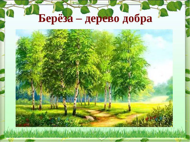 Берёза – дерево добра