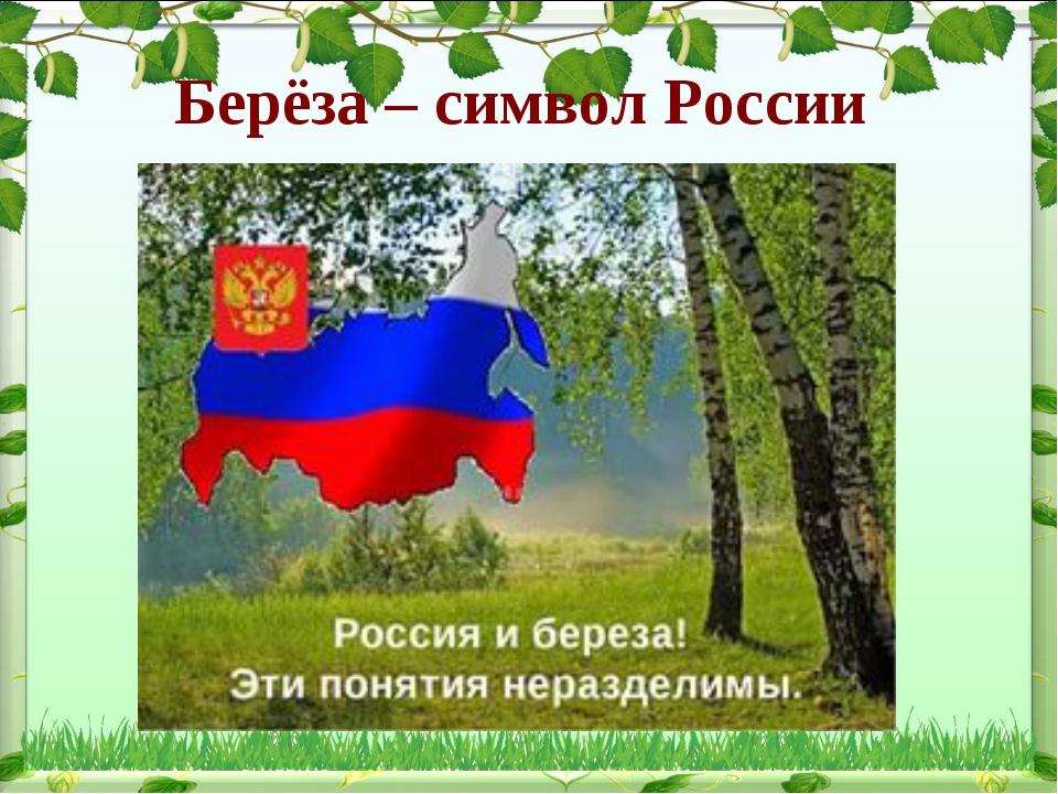 Берёза – символ России