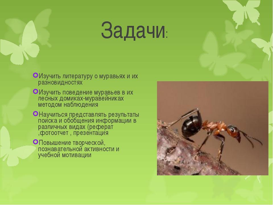 Изучить литературу о муравьях и их разновидностях Изучить литературу о мурав...