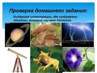 Выберите иллюстрации, где изображены объекты, которые изучает биология. Прове