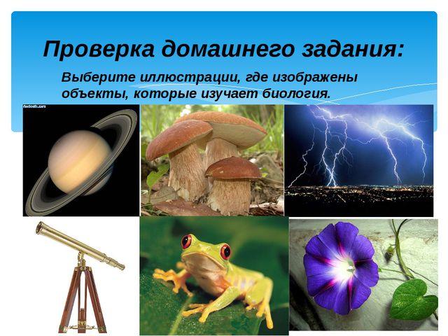 Выберите иллюстрации, где изображены объекты, которые изучает биология. Прове...