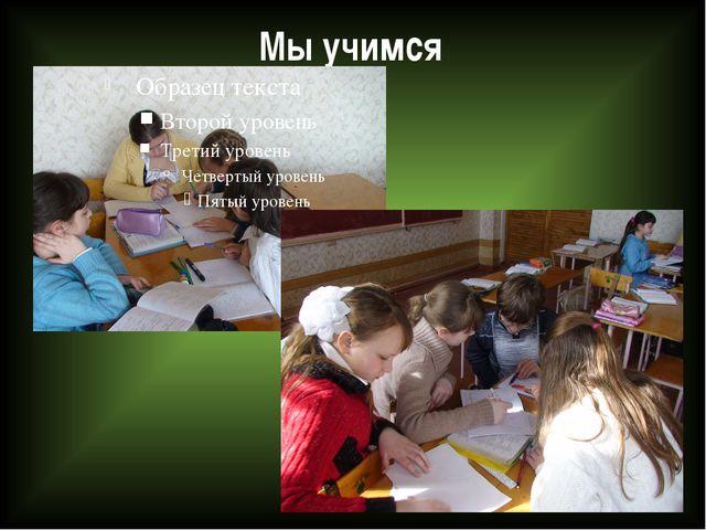 Мы учимся