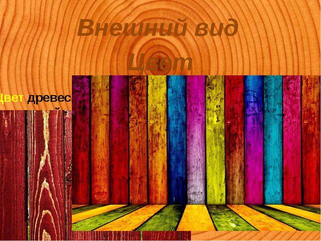 Внешний вид Цвет Цвет древесина получает за счет наличия в ней различной конц...