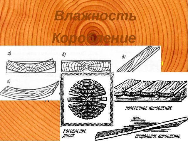 Влажность Коробление Изменение геометрических размеров и формы пиломатериалов...