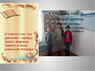 В классе у нас три девчонки – умница Диана, модница Камила и наша новенькая