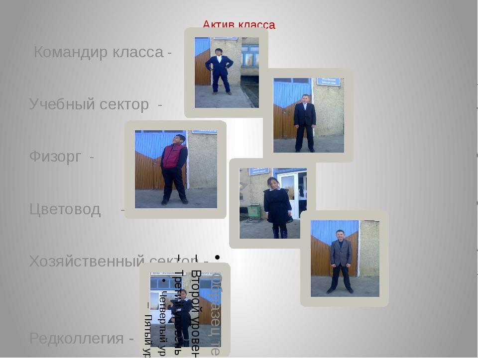 Актив класса Командир класса - Учебный сектор - Физорг - Цветовод - Хозяйстве...