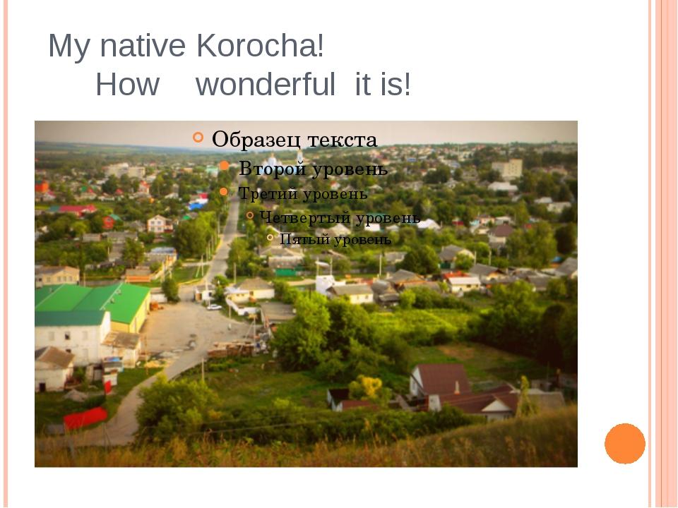 My native Korocha! How wonderful it is!