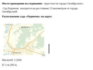 Место проведения исследования: окрестности города Октябрьского. Сад Родничок