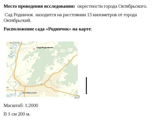 Место проведения исследования: окрестности города Октябрьского. Сад Родничок...