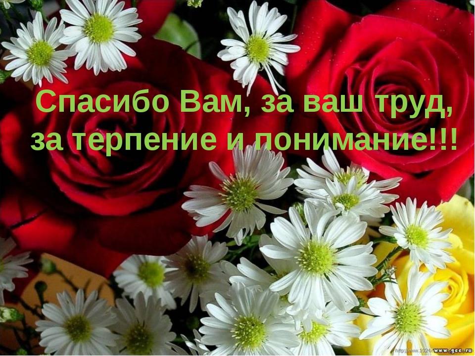 Спасибо Вам, за ваш труд, за терпение и понимание!!!