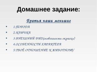 Домашнее задание: Братья наши меньшие 1.ПОРОДА 2.КЛИЧКА 3.ВНЕШНИЙ ВИД(особенн