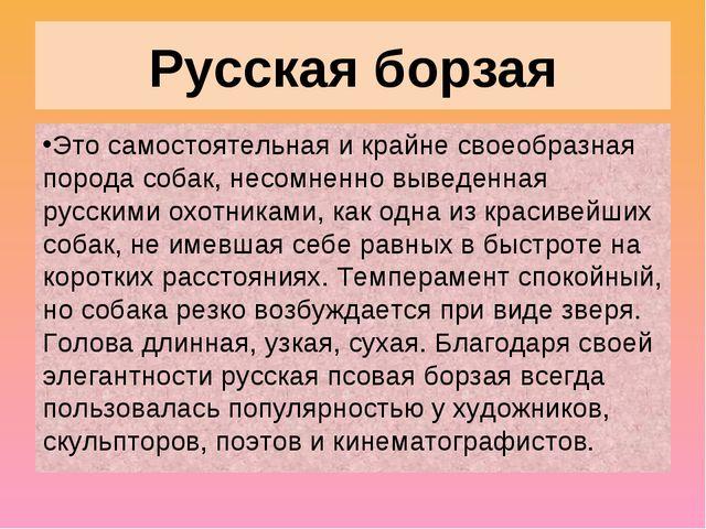 Русская борзая Это самостоятельная и крайне своеобразная порода собак, несомн...