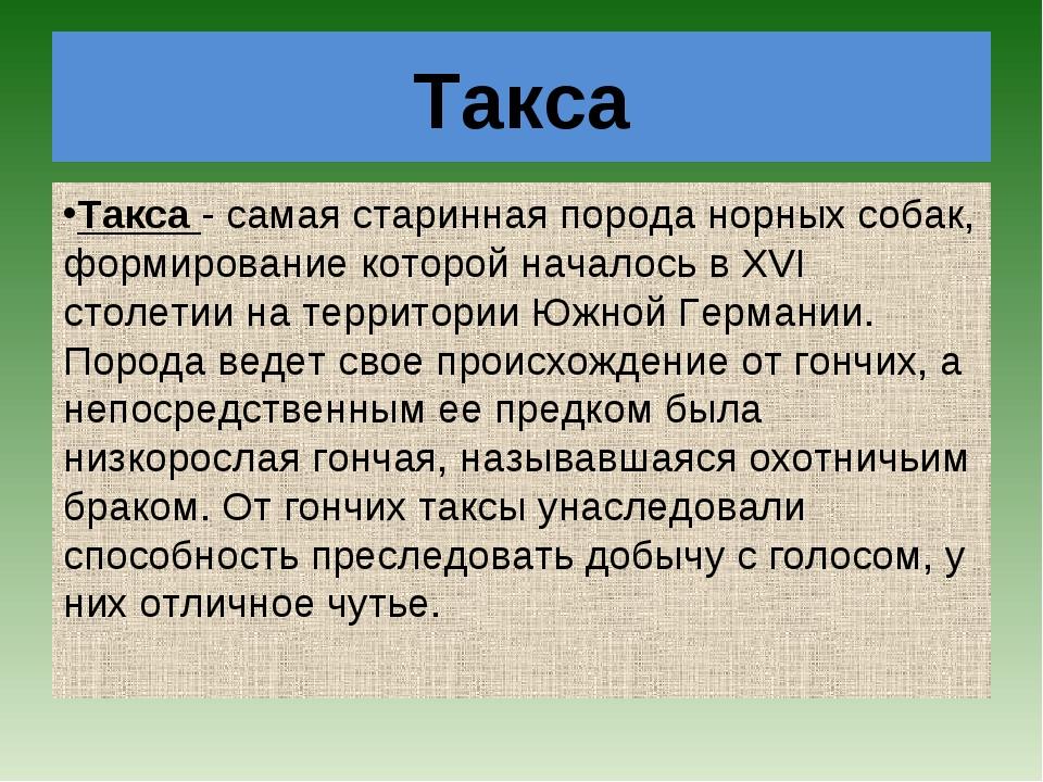 Такса Такса- самая старинная порода норных собак, формирование которой начал...