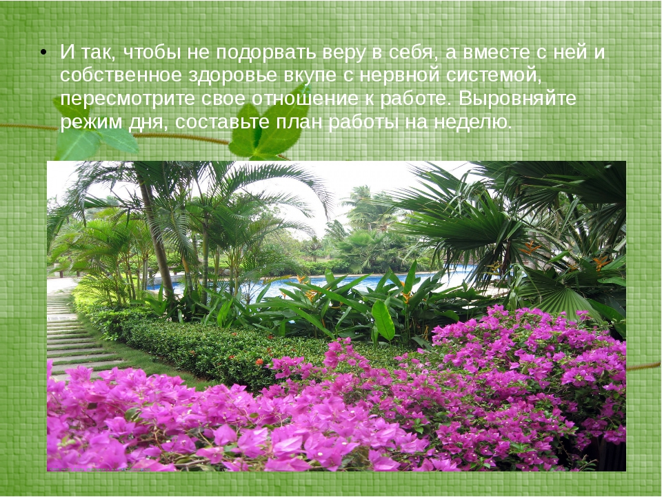 И так, чтобы не подорвать веру в себя, а вместе с ней и собственное здоровье...