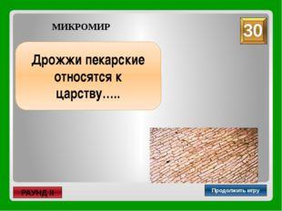 лакто- и бифидобактерии Продолжить игру РАУНД II МИКРОМИР Как называются орг