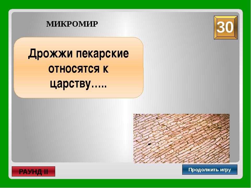 лакто- и бифидобактерии Продолжить игру РАУНД II МИКРОМИР Как называются орг...