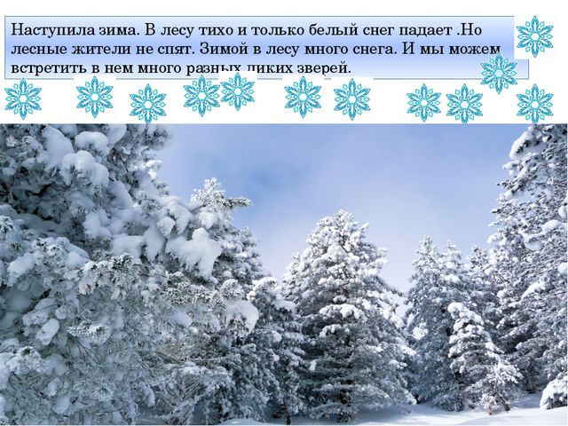Наступила зима. В лесу тихо и только белый снег падает .Но лесные жители не с...