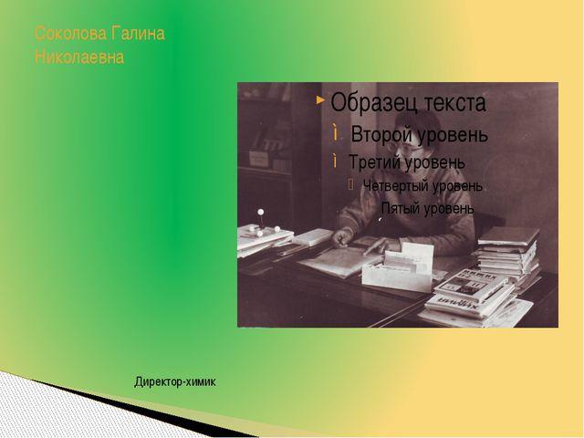 Соколова Галина Николаевна Директор-химик