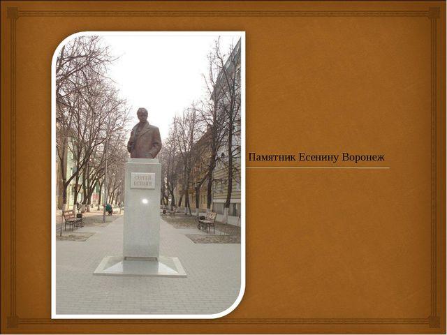 Памятник Есенину Воронеж