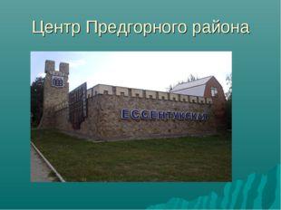 Центр Предгорного района