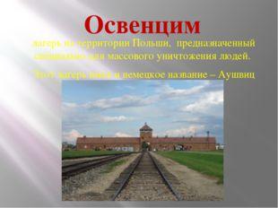 Освенцим лагерь на территории Польши, предназначенный специально для массовог