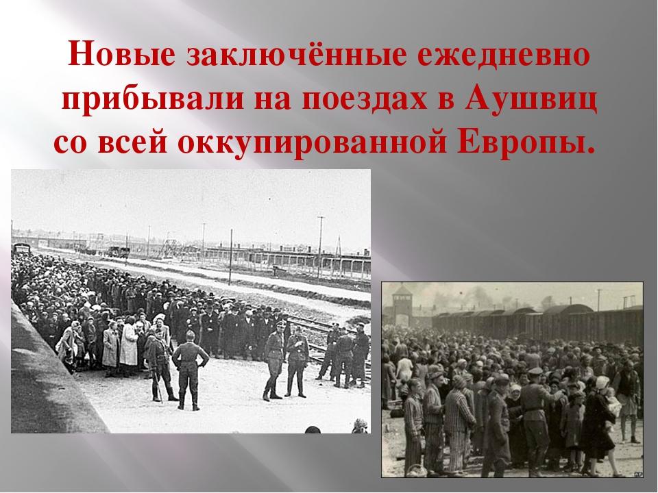 Новые заключённые ежедневно прибывали на поездах в Аушвиц со всей оккупирован...