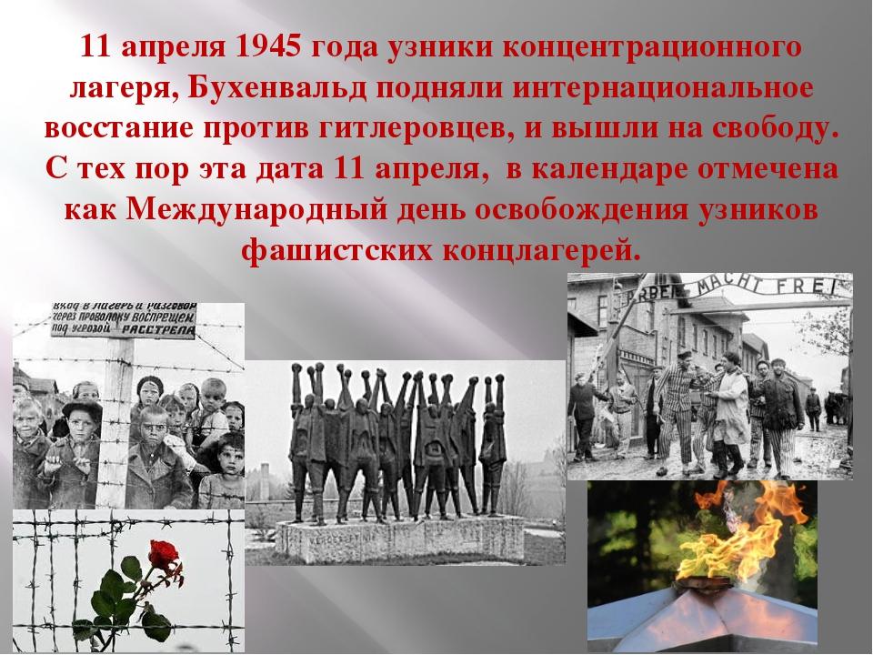 11 апреля 1945 года узники концентрационного лагеря, Бухенвальд подняли интер...