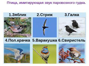Птица, имитирующая звук паровозного гудка. Зяблик 2.Стриж 3.Галка 4.Пол.крач