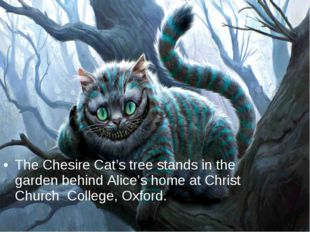 The Chesire Cat's tree stands in the garden behind Alice's home at Christ Chu