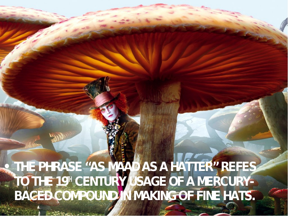 """THE PHRASE """"AS MAAD AS A HATTER"""" REFES TO THE 19TH CENTURY USAGE OF A MERCURY..."""