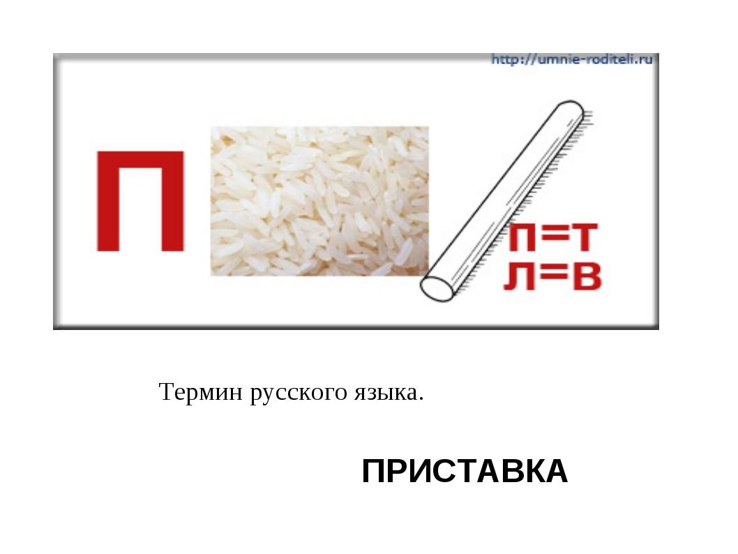 ПРИСТАВКА Термин русского языка.