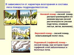 В зависимости от характера возгорания и состава леса пожары подразделяются на
