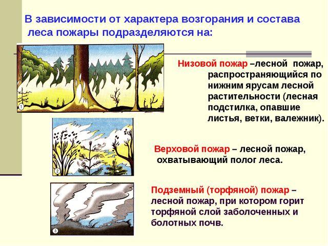 В зависимости от характера возгорания и состава леса пожары подразделяются на...