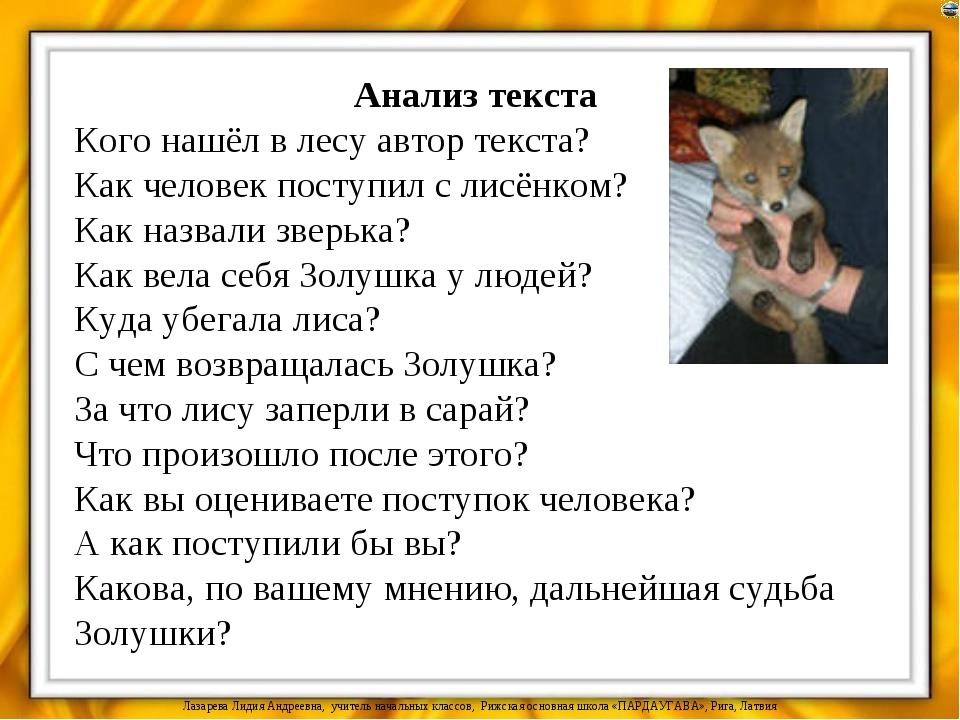Анализ текста Кого нашёл в лесу автор текста? Как человек поступил с лисёнком...