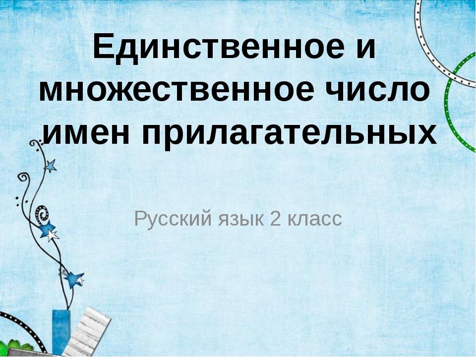 Русский язык 2 класс Единственное и множественное число имен прилагательных