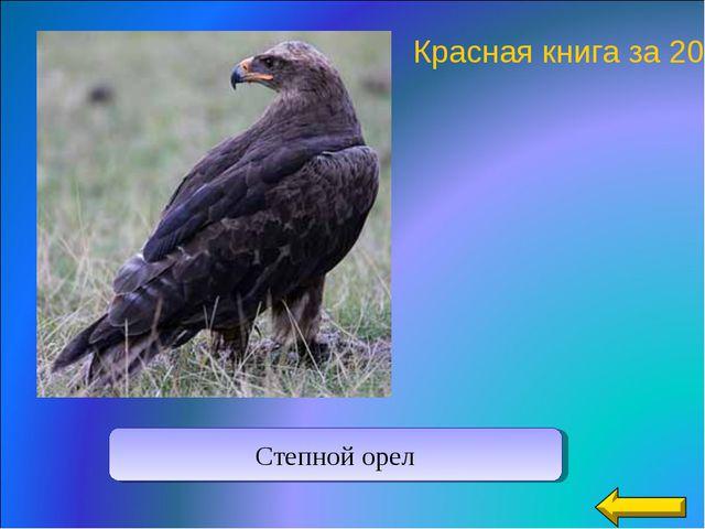 Красная книга за 20 Степной орел