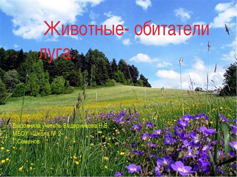Животные луга Животные- обитатели луга. Выполнила учитель Ведерникова Н.Б. МБ...