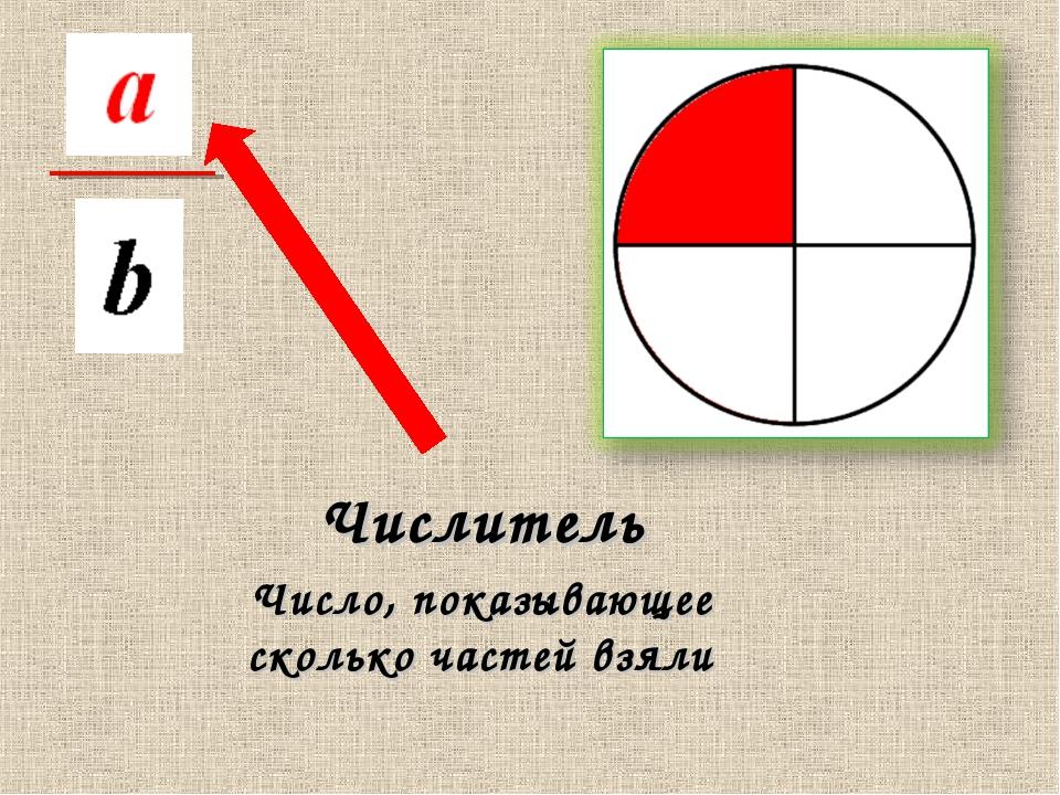 Числитель Число, показывающее сколько частей взяли