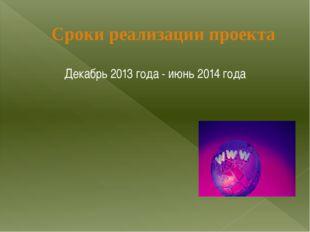 Декабрь 2013 года - июнь 2014 года Сроки реализации проекта
