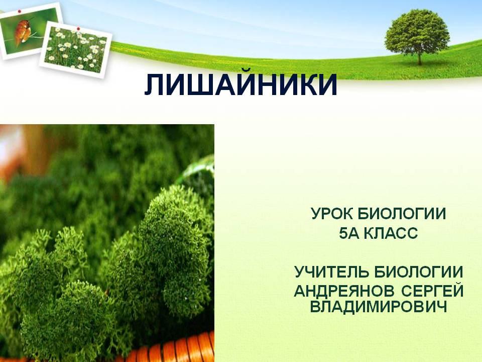 hello_html_37b1a13a.jpg