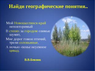 Найди географические понятия.. Мой Новошахтинск-край неповторимый В степях за