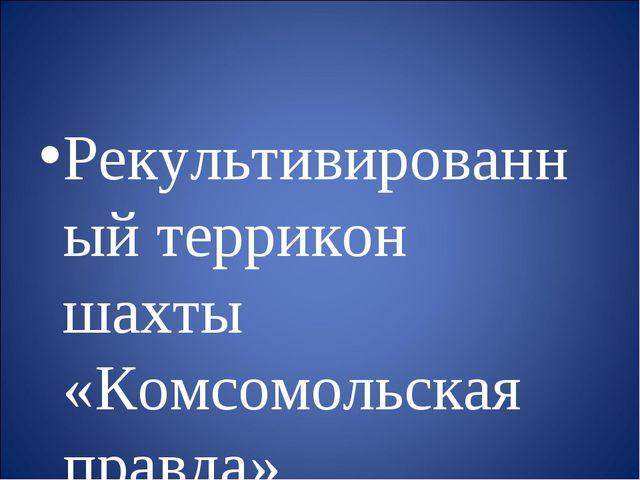 Рекультивированный террикон шахты «Комсомольская правда»