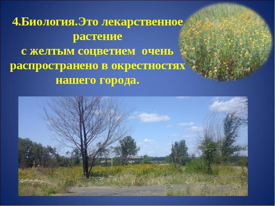4.Биология.Это лекарственное растение с желтым соцветием очень распространен...
