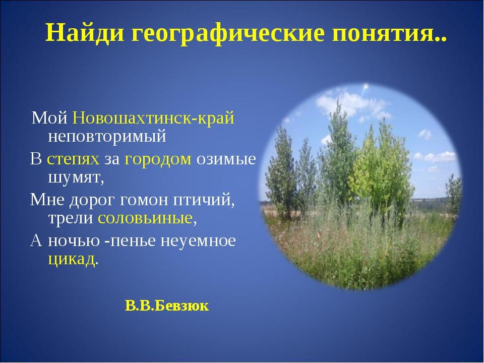 Найди географические понятия.. Мой Новошахтинск-край неповторимый В степях за...