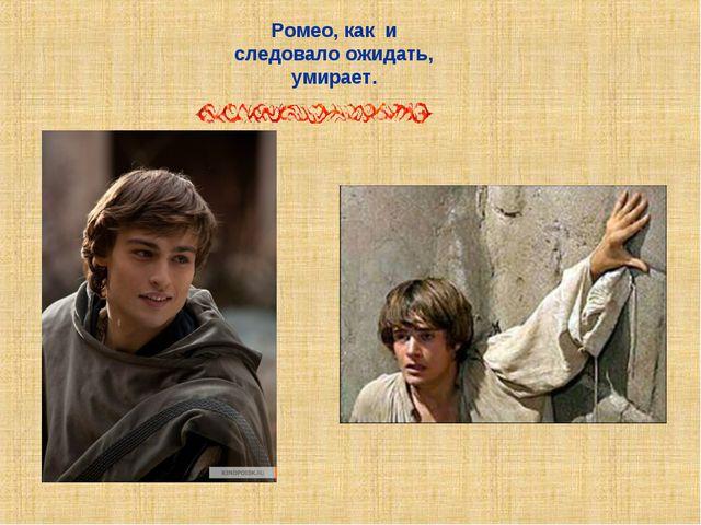 Ромео, как и следовало ожидать, умирает.