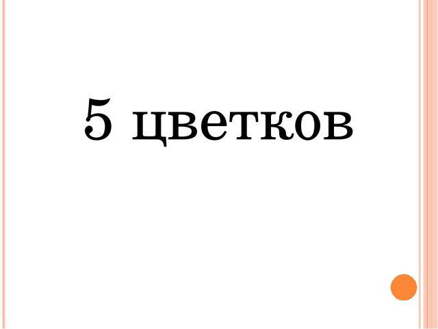 5 цветков