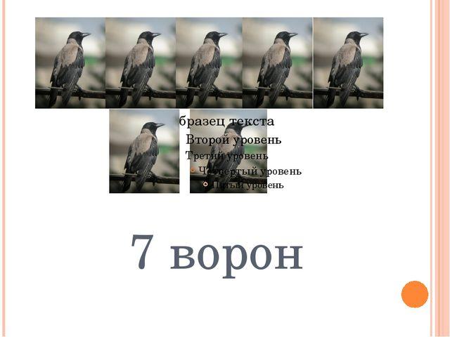7 ворон
