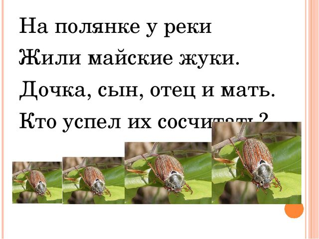 На полянке у реки Жили майские жуки. Дочка, сын, отец и мать. Кто успел их со...