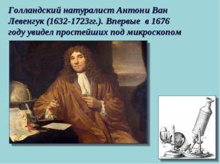 Голландский натуралист Антони Ван Левенгук (1632-1723гг.). Впервые в 1676 год